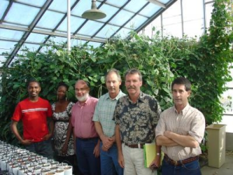 Flashback: UCR cowpea team in 2009. Left to right: Wellington Muchero, Ndeye Ndack Diop (familiar, right?!), Raymond Fenton, Jeff Ehlers, Philip Roberts and Timothy Close in a greenhouse on the UCR campus, with cowpeas in the background. Ndeye Ndack and Jeff seem to love upstaging each other. She came to UCR as a postdoc working under Jeff, then she moved to GCP, with oversight over the TLI project, thereby becoming Jeff's boss, then he moved to the Foundation with oversight over TLI. So, what do you think might be our Ndeye Ndack's next stop once GCP winds up in 2014? One can reasonably speculate....!