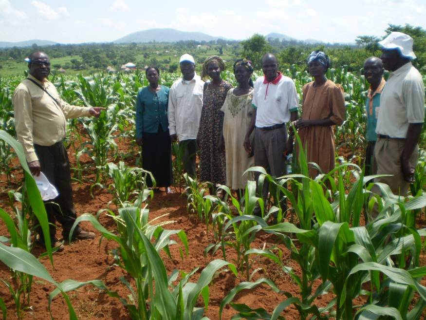 Sam (left)   a group of farmers and alking to farmers and researchers at Sega, Western Kenya, in June 2009