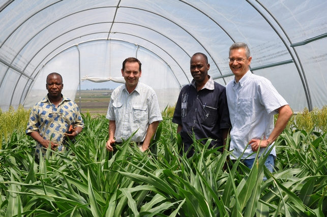 Left to right: Niaba Teme (Mali), David Jordan (Australia), Sidi Coulibaly (Mali) and Andrew Borrell (Australia) visiting an experiment at Hermitage Research Facility in Queensland, Australia.