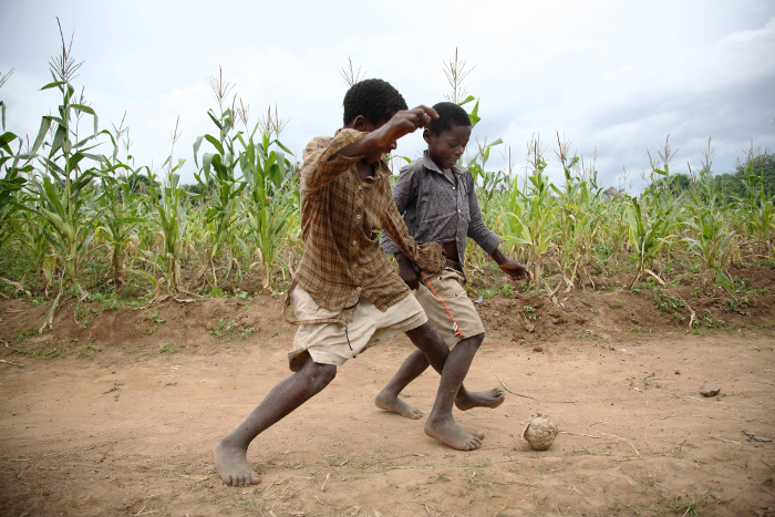 Enjoy the game, but keep off the plants! Boys play football next to maize fields in Khulungira, central Malawi.