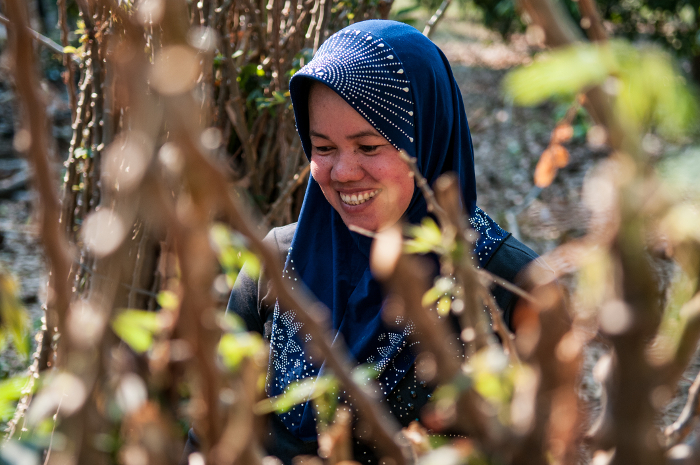 Wreathed in sunlight and smiles, a cassava farmer inspects her crop in Kratie, Cambodia.