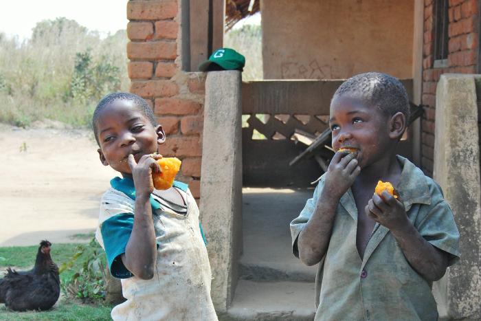 Eyes dancing with past, present or future mischief, two cheeky young chappies from Mozambique enjoy the sweet taste of orange sweet potato enriched with pro-vitamin A.