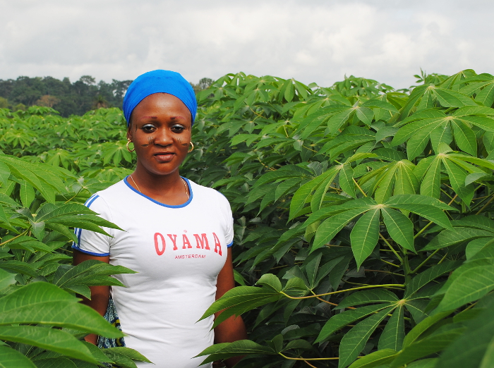 A regal African beauty tends her gorgeous cassava plants.