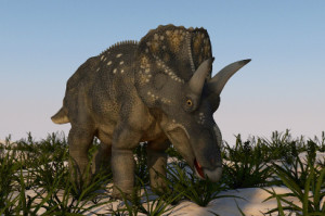 Did Triceratops, just like us, enjoy its daily morning breakfast cereal?